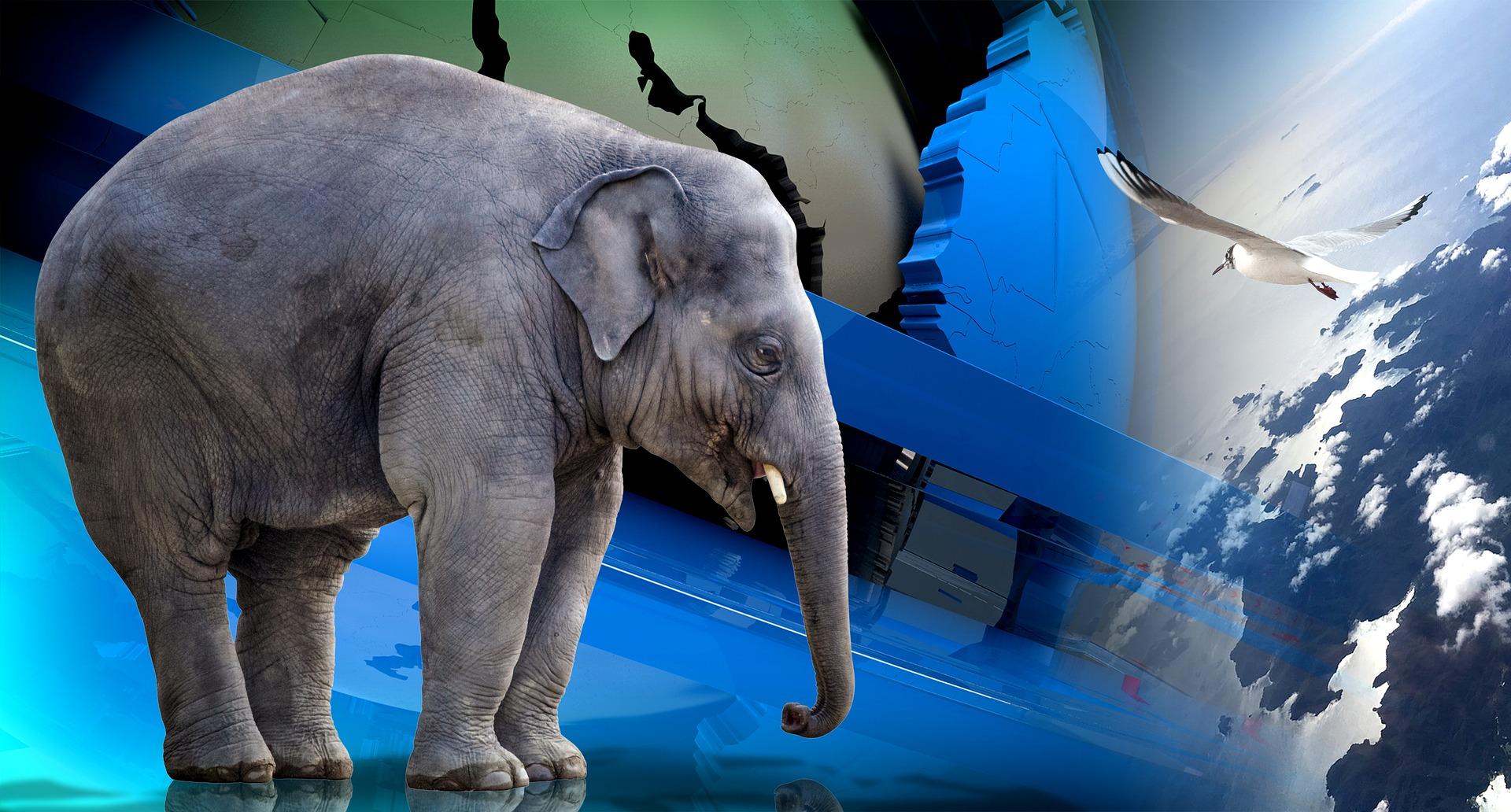 Der angekettete Elefant in unserem Leben